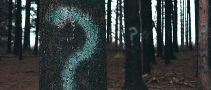 228. Pourquoi modifier les anciens articles sur son blog ? AskBertrand